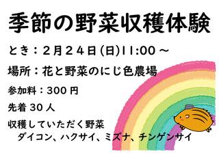 収穫体験告知ポスター.jpg