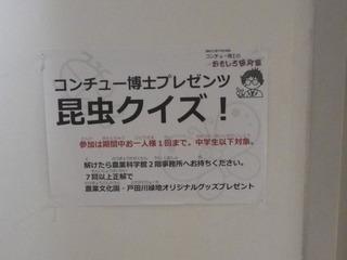 IMGP0056.JPG